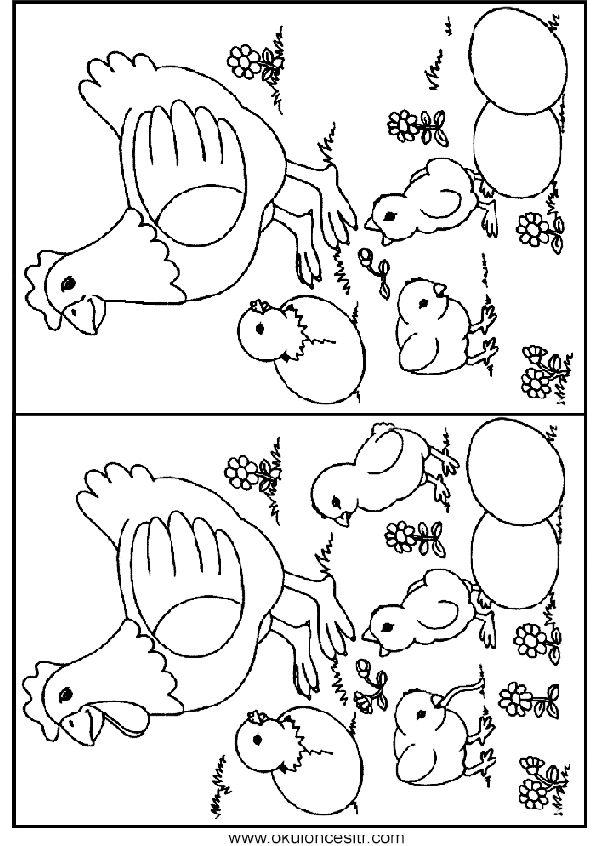 Aradaki farkı bul sayfası ve arasındaki farkı bulmaca çalışma sayfası, tavuk resmi iki resim arasındaki farkları bulmaca oyunu ile 7 okul öncesi anasınıfı yedi farkı bulmaca oyunları çalışmaları sayfaları indirme web sitesi. Preschool and kindergarten, kids spot find the differences worksheets pages printables download.