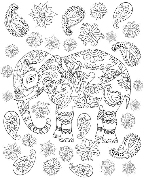 free elephant coloring page for adults - Watercolor Pages