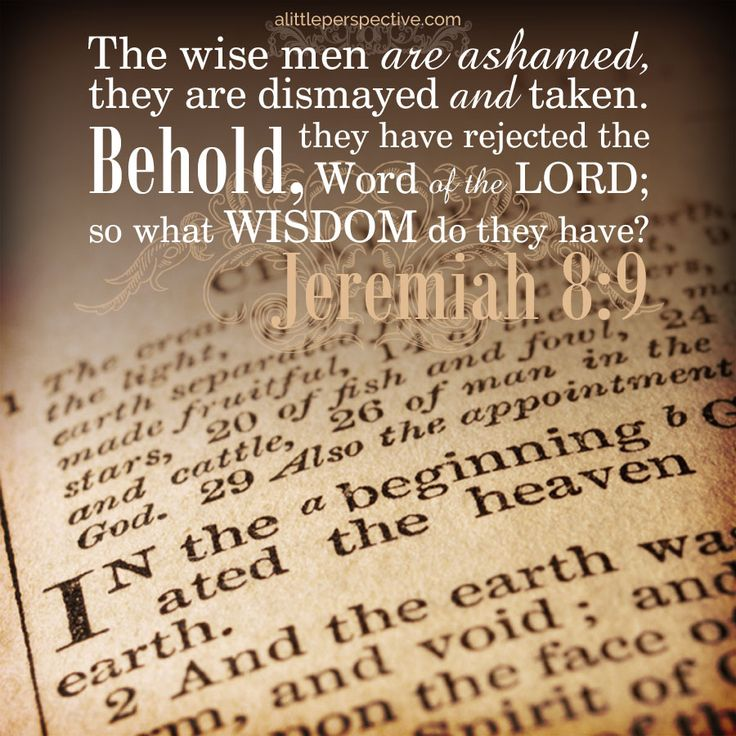 jeremiah 7 and 8 | reading through the old testament in chronological order in 2015 | christine's bible study at alittleperspective.com