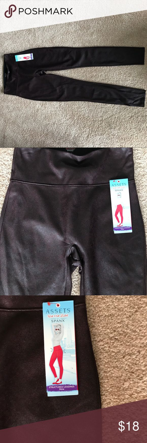 Spanx Leggins Spanx leggins, umber brick with some that looks like leather. 4 inch wide shaping waistband. 40 inches long from waist to hem. SPANX Pants Leggings