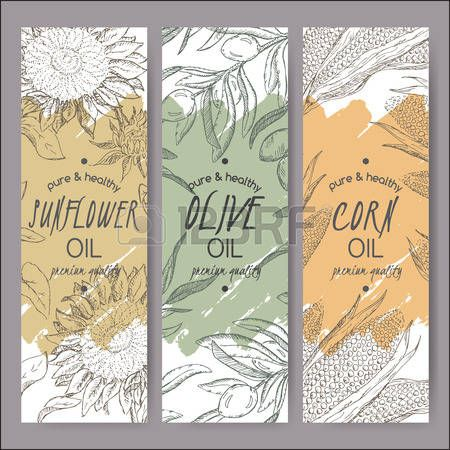 sunflower+oil%3A+Set+of+3+vector+sunflower%2C+olive%2C+corn+oil+label+templates.+Based+on+had+drawn+sketch.+Great+for+packaging+and+advertising+design.+%D0%98%D0%BB%D0%BB%D1%8E%D1%81%D1%82%D1%80%D0%B0%D1%86%D0%B8%D1%8F