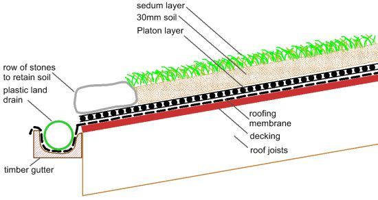 diagram of sedum roof construction