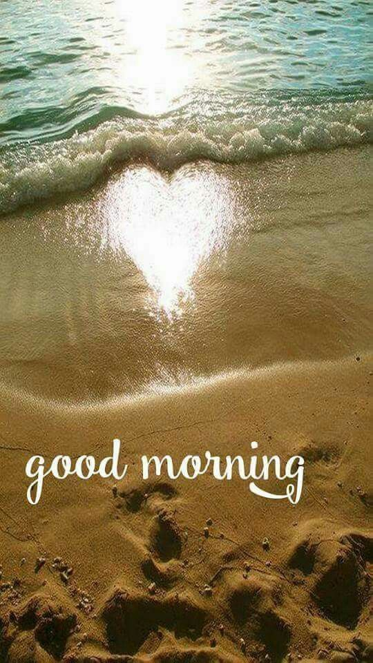 Good morning Beautiful!!!!! I hope you slept well and are have a great morning!!!! Talk soon, love always!