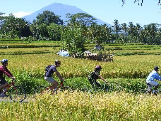 Our famous eco/educational cycling tour, one of the numerous adventures we offer in Bali