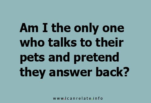 (NO!).....Am I the Only one? pets dog cat funny true words love