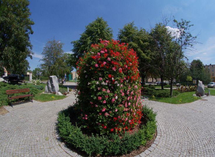 Terra Flower Power | Strzelin