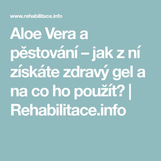 Aloe Vera a pěstování – jak z ní získáte zdravý gel a na co ho použít?   Rehabilitace.info