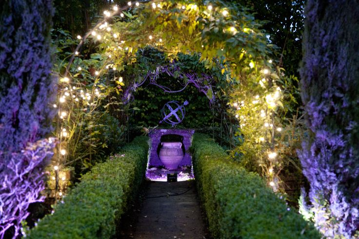 A Midsummers Night Dream... fairy lights in foliage