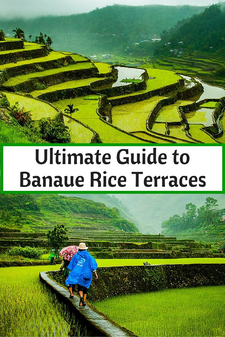 Ultimate Guide To Banaue Rice Terraces                                                                                                                                                      More