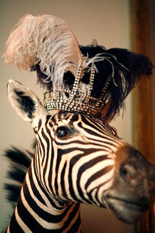 Every girl needs a crown.  #whiteandblack