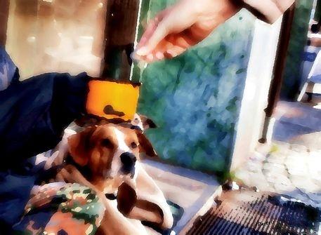 mondo cane_1_Astrid Bartels von mondo-cane bei artflakes.com als Poster oder Kunstdruck $13.86