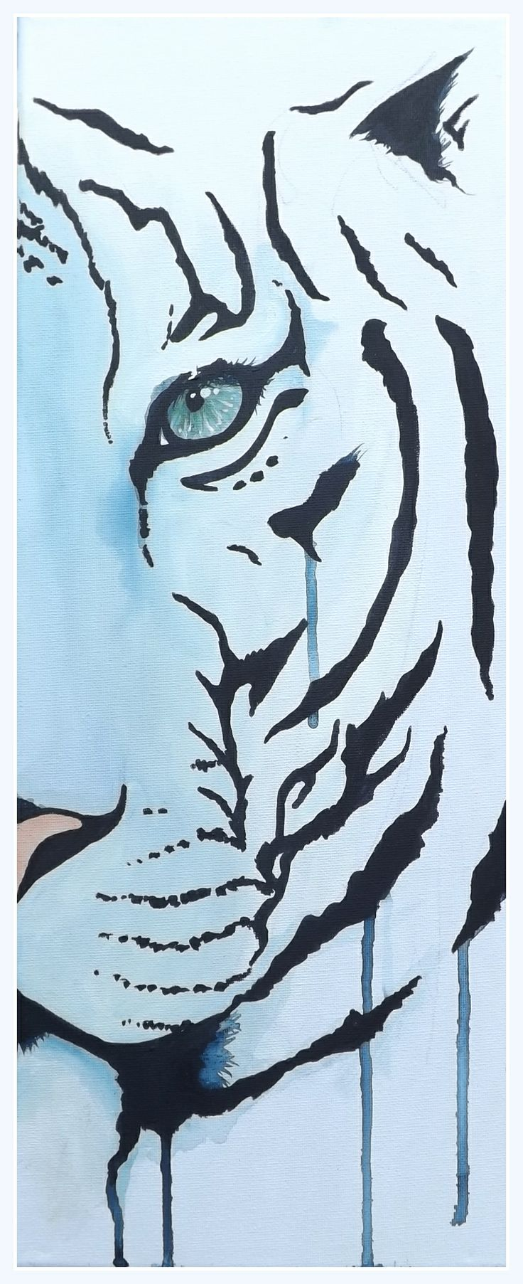 A white tiger looks out from a white background, outlined ...