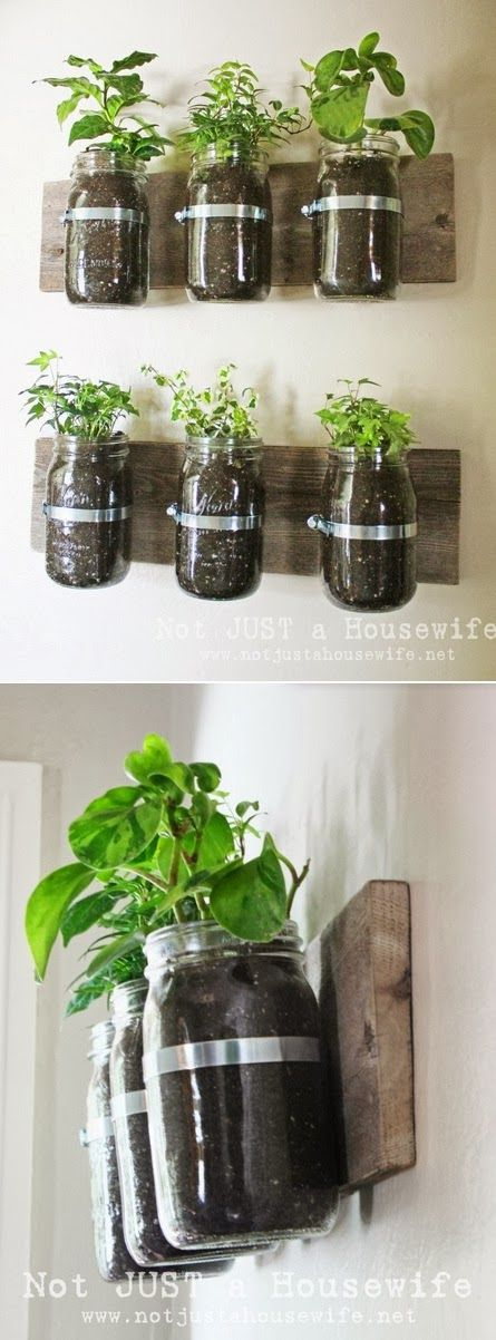Mason Jar Wall Planter. Kitchen or dining room decoration.  DIY. Green decorating