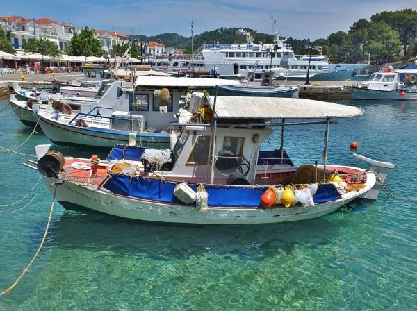 Fishing boats in Skiathos Town