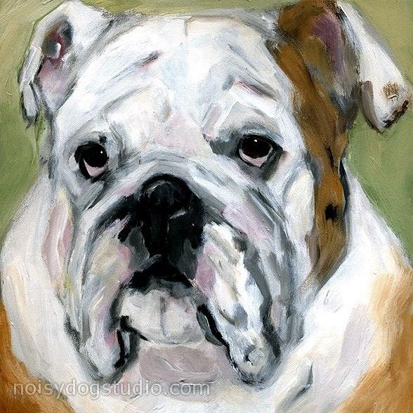 Baggy Bulldogs | Bulldogs | Pinterest | Tocino, Colegios y ...