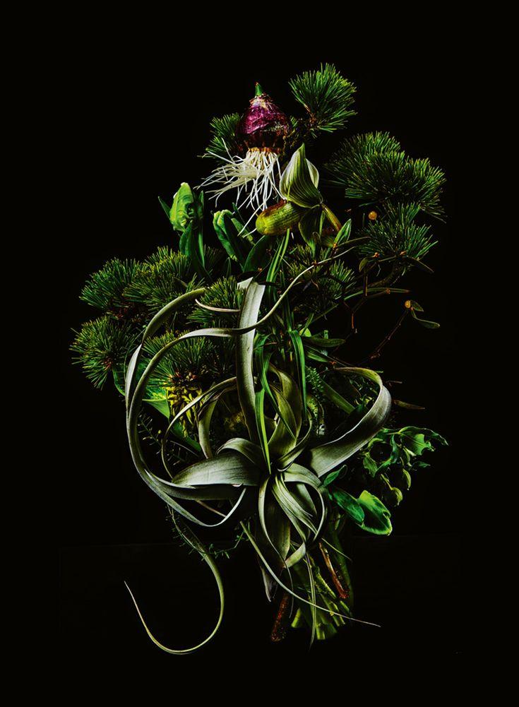 Les 254 meilleures images du tableau jardins d 39 eden sur for Decoration jardin d eden