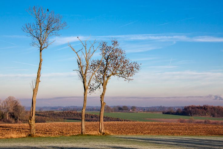 Zuid Limburg ochtendzon Banholt 2013