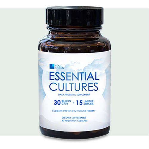Leaf Origin Essential Cultures Probiotics Cultures Review this is a pro-biotic that helps with digestive health. Here is everything you need to know about Essential Cultures today  #essentialcultures #leaforigin #digestivehealth