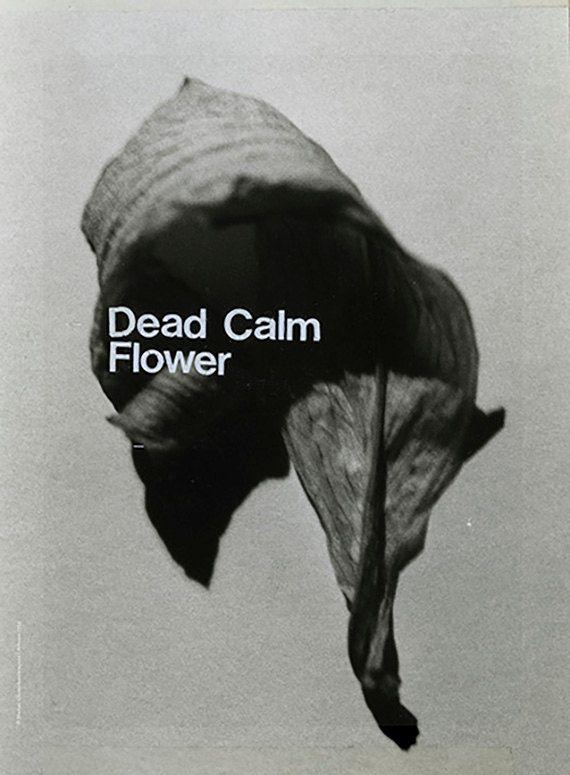 """""""Dead calm flower"""" _ Michail Chatzicharalampous _ Artemis 1932"""