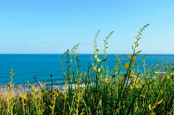 holiday Calabria Capo Rizzuto  Book your holiday with us www.casevacanze-caporizzuto.com