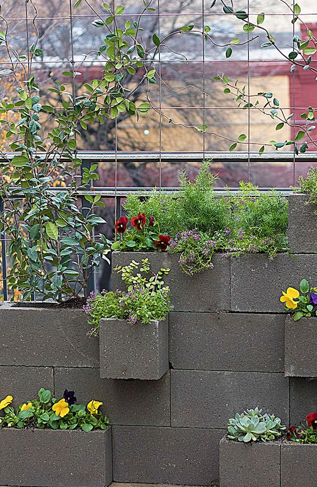 No matter the size of your space, you can cultivate the garden of your dreams. Check out our tutorial to see how we added a vertical garden with beautiful plants and herbs to a patio space.