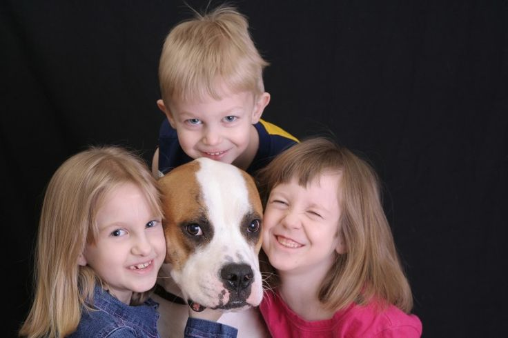 Note the good intention of the kids. Note the closed mouth and half-moon eye of the dog.  Intervene!