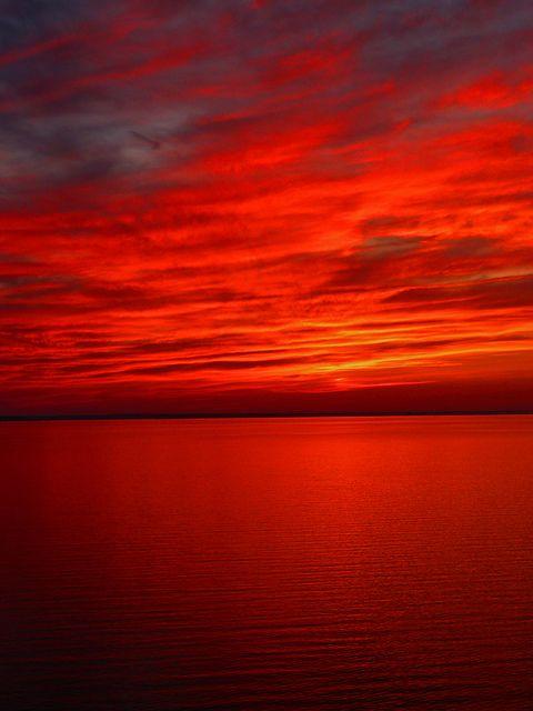 Red   Rosso   Rouge   Rojo   Rød   赤   Vermelho   Color   Colour   Texture   Form   sunset