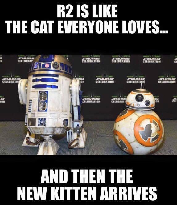 And C3PO is the dog you love and care for and make sure it doesn't do anything bad.