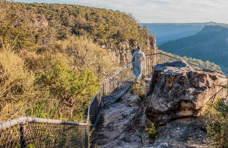 Warris Chair lookout walking track, Budderoo National Park. Photo: Michael Van Ewijk