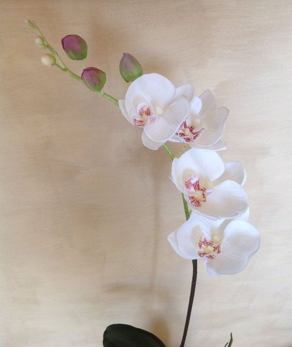 92 cm Real Touch Phalaenopsis Orchids by Anggerik on Etsy