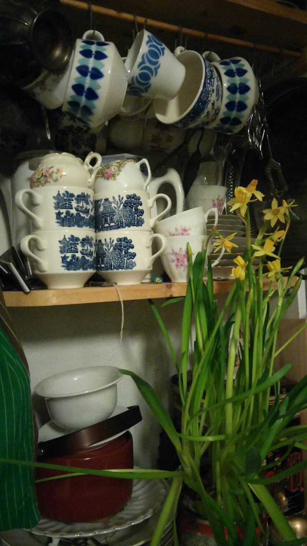 Kahvikupin hyllyllä, Arabia ym. Pääsiäisen odotusta. Coffee cup shelf, porcelain,   narcissus, kitchen