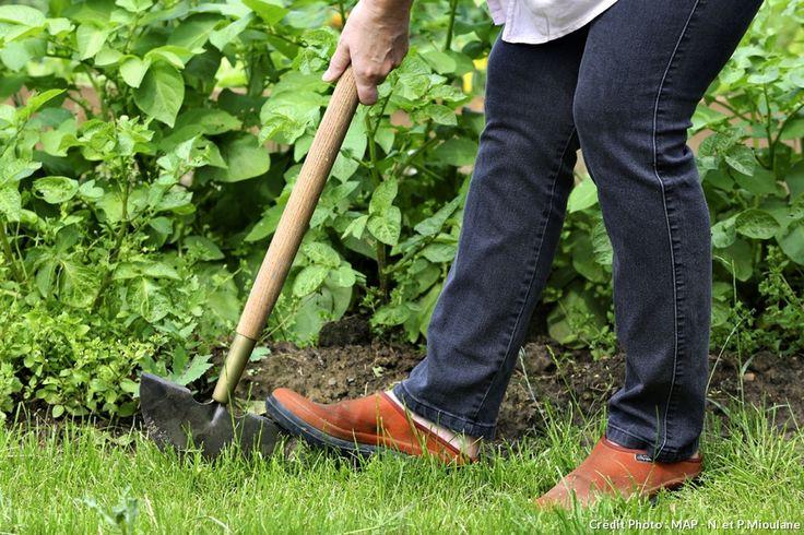 17 meilleures id es propos de bordures de pelouse sur for Recherche tonte de pelouse