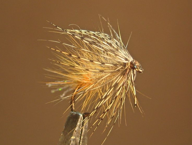 45 best images about flies wet on pinterest olives for Wet fly fishing