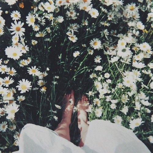 Bohemian Tumblr Themes | Go Back > Gallery For > Flower ...