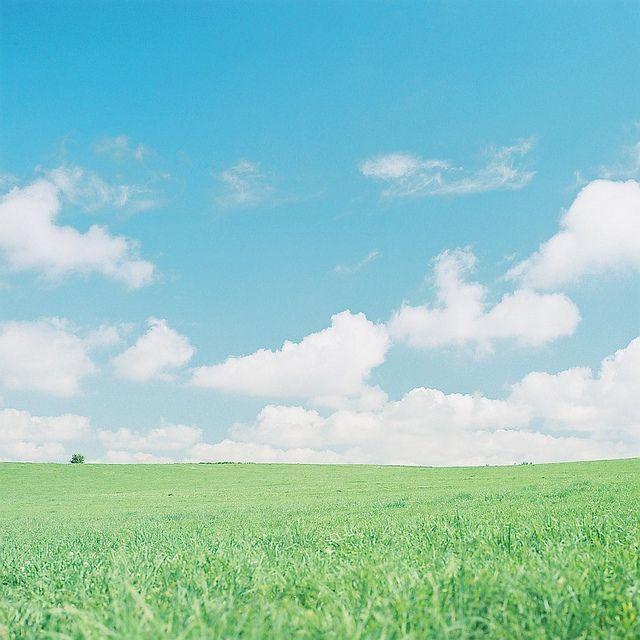 風を感じて by −シゲ−, via Flickr