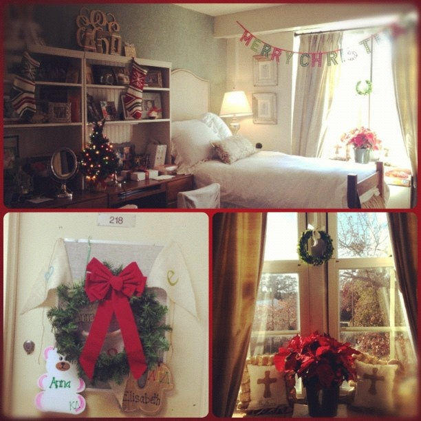 How to get around the no live Christmas trees rule  ~ 202554_Real Dorm Room Ideas