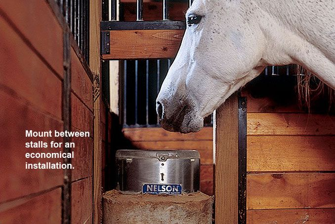 Nelson Mfg | Automatic Horse Waterers Series 700 - Mount between stalls for an economical insallation. https://www.nelsonmfg.com/horse-waterers/700/