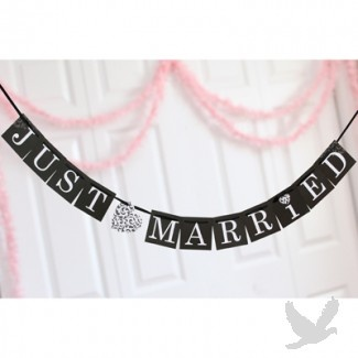 17 Best ideas about Just Married Banner on Pinterest Burlap