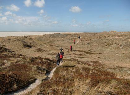 Sand dunes, hiking, beach