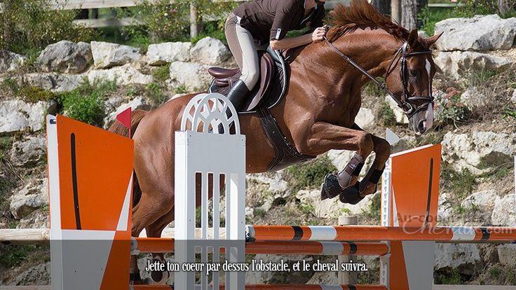 Jette ton coeur par dessus l'obstacle, et le cheval suivra.