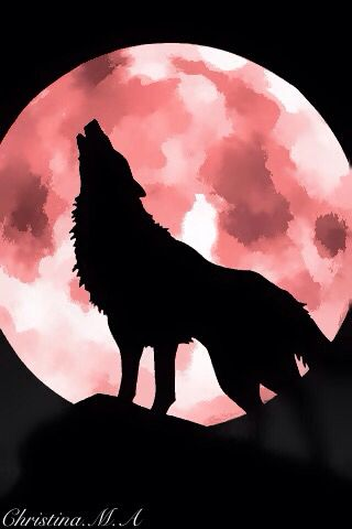 Wolf and Red Moon