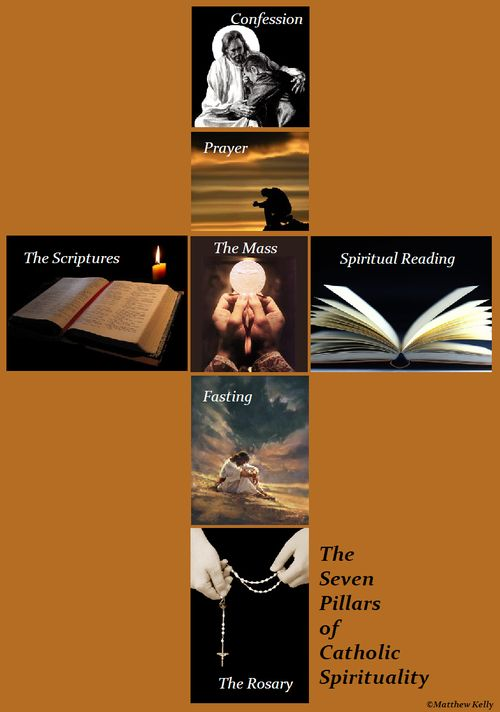 The 7 Pillars of Catholic Spirituality: Confession, Contemplation, The Mass, The Scriptures, Fasting, Spiritual Reading, The Rosary   ~Matthew Kelly ~