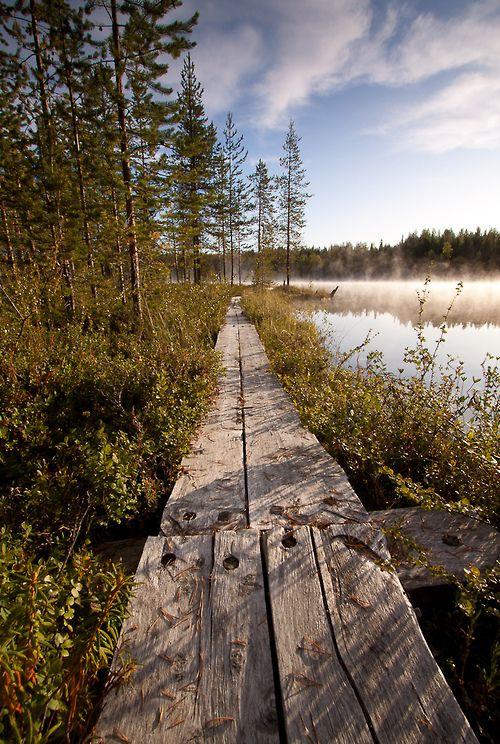 Lapland, Finland. Photo by Andrey Grivitskiy.