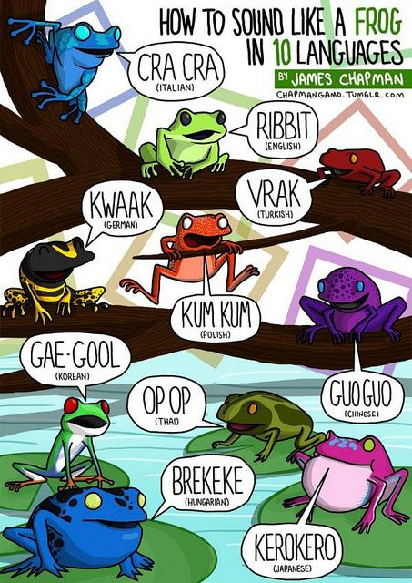 """How to Sound Like a Frog in 10 Languages"" by James Chapman"