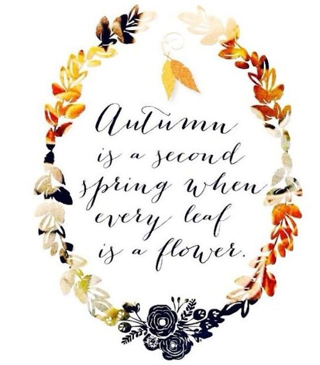 Autumn is a second spring when every leaf is a flower.