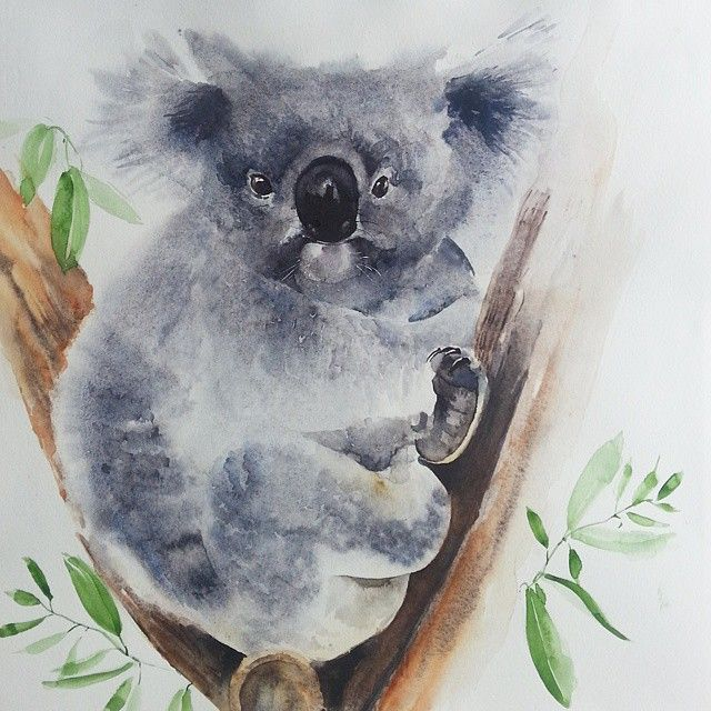 Watercolor Wildlife Art Akvarel Aquarelle Worldofartists