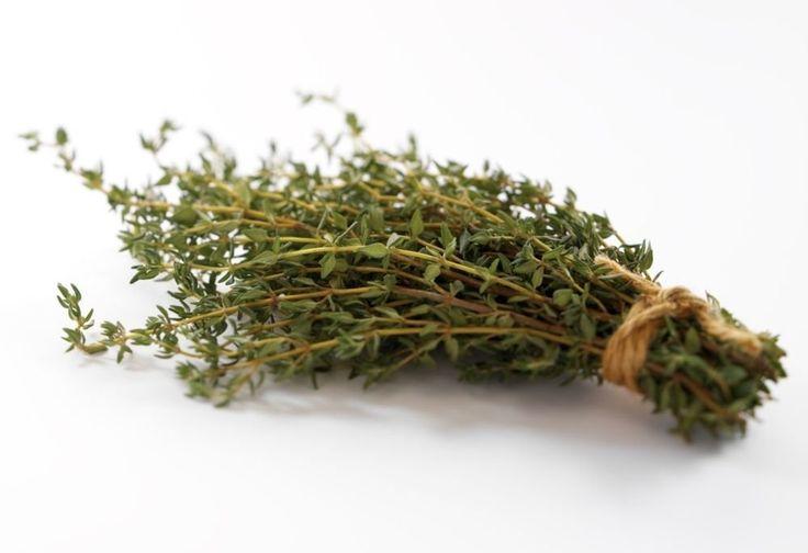 A gyógynövények közül az egyik legnagyobb varázserejű a kakukkfű. A gyógyszertári köhögéscsillapító szirupoknak is fő alkotóeleme. Május elején a...