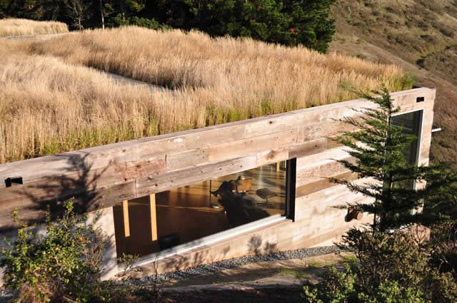 architecture-landscape balance with earth-sheltered design and serious green roof.
