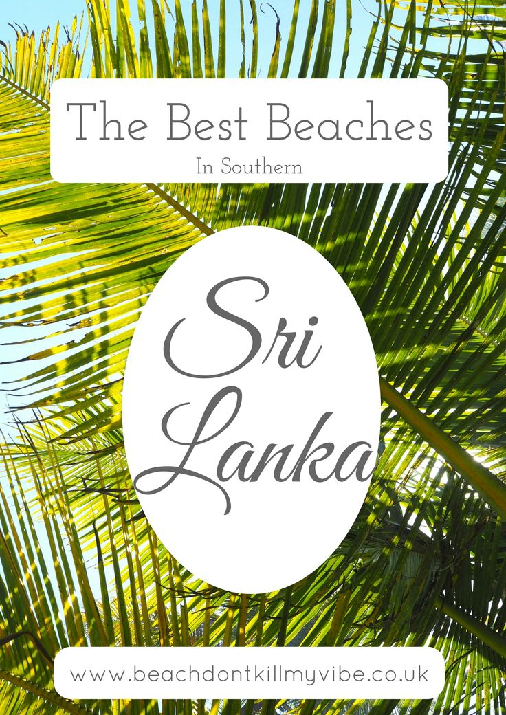 Thinking of heading to Southern Sri Lanka, here are the best bits for you!  #backpacking #asia #Srilanka #traveltips #solofemaletravel #travel