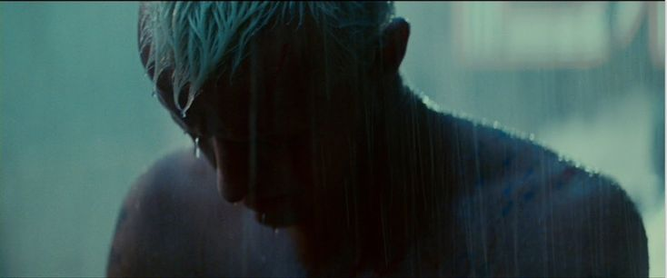 Inspire.: Do androids dream of electric sheep?    Roy in Blade Runner